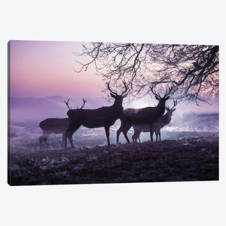 Mystic Mists Canvas Print #MXE88} by Max Ellis Art Print