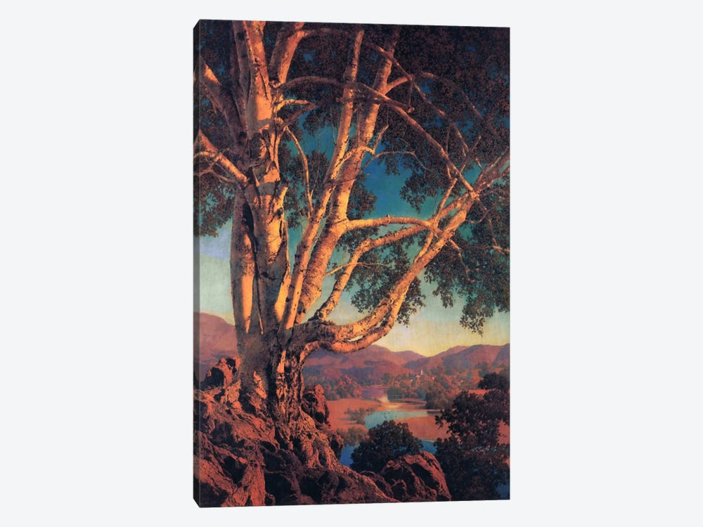 Old White Birch by Maxfield Parrish 1-piece Canvas Print