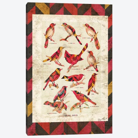 Song Birds V2 Canvas Print #MXS101} by Diego Tirigall Canvas Art