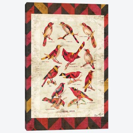 Song Birds V2 Canvas Print #MXS101} by Diego Tirigall Canvas Art