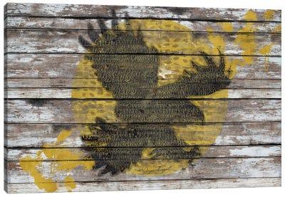 Eagle Sunset Canvas Print #MXS111