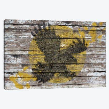 Eagle Sunset Canvas Print #MXS111} by Diego Tirigall Canvas Art Print