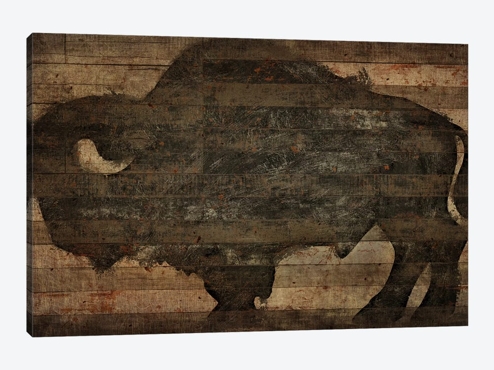Buffalo I by Diego Tirigall 1-piece Art Print