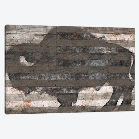 Buffalo II Canvas Print #MXS113} by Diego Tirigall Art Print