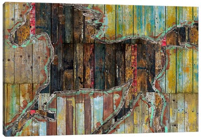Galope Canvas Print #MXS114