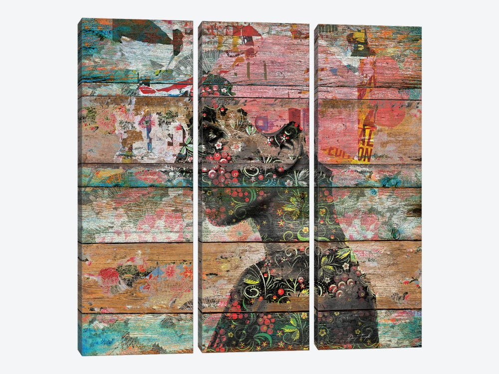 Inner Nature (Profile Of Woman) by Diego Tirigall 3-piece Canvas Art Print
