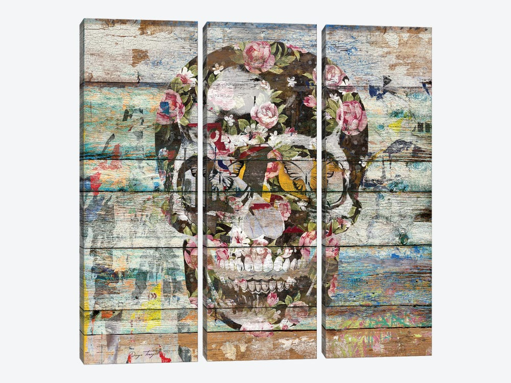 Under The Watchful Eye (Skull) by Diego Tirigall 3-piece Canvas Art Print
