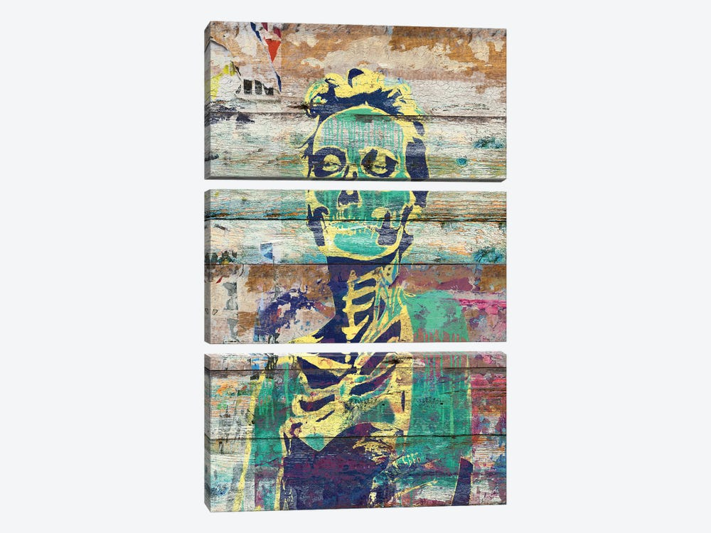 Life And Death (Sugar Skull Girl) by Diego Tirigall 3-piece Canvas Print