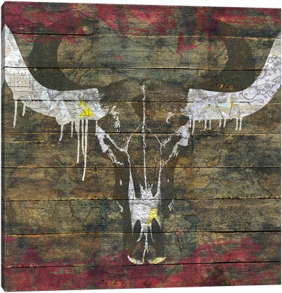 Two Sides (Cow Skull) Canvas Art Print