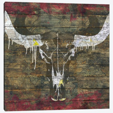 Two Sides (Cow Skull) Canvas Print #MXS135} by Diego Tirigall Canvas Wall Art