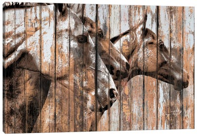 Run With The Horses Canvas Art Print