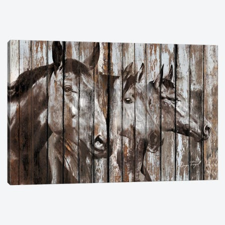 Three Horses Canvas Print #MXS158} by Diego Tirigall Art Print