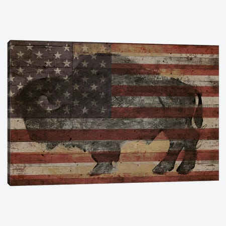American Bison I Canvas Print #MXS173} by Diego Tirigall Canvas Print