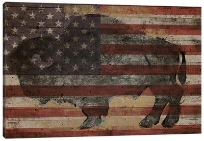 American Bison I Canvas Art Print
