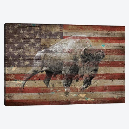 American Bison II Canvas Print #MXS174} by Diego Tirigall Canvas Art