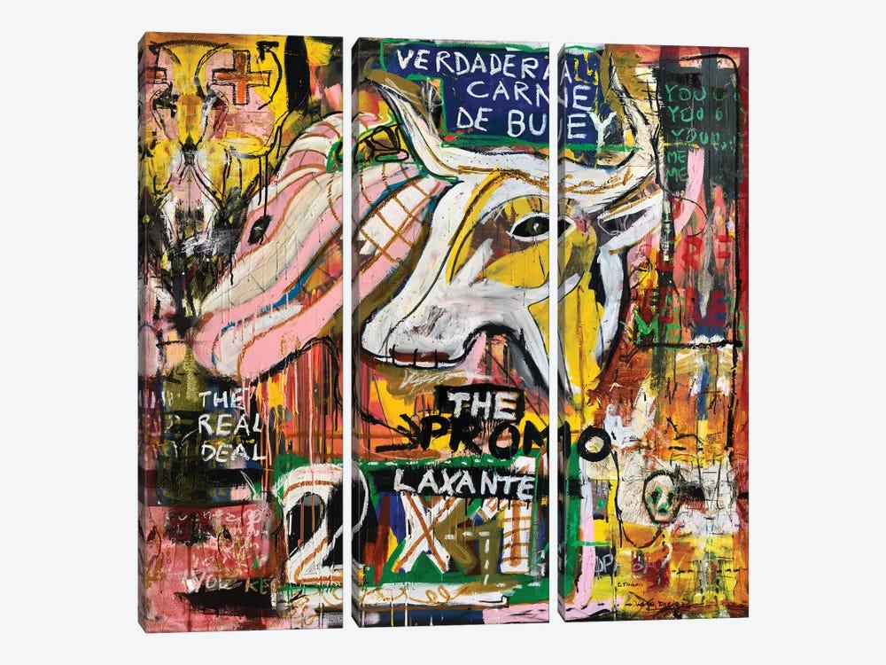 Verdadera Carne de Buey II by Diego Tirigall 3-piece Canvas Artwork