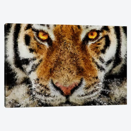 Animal Art - Tiger Canvas Print #MXS38} by Diego Tirigall Canvas Artwork