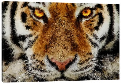 Animal Art - Tiger Canvas Art Print