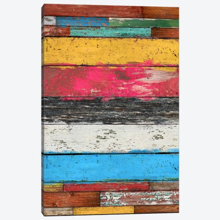 Country Pop #2 Canvas Print #MXS48} by Diego Tirigall Art Print