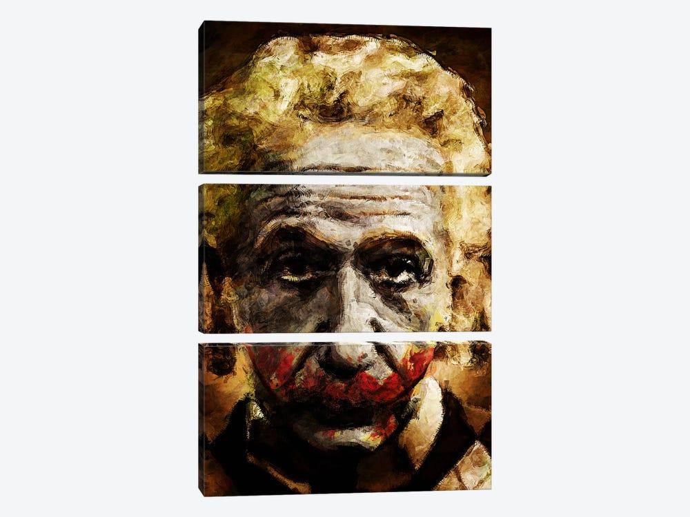 Einstein The Joker by Diego Tirigall 3-piece Art Print