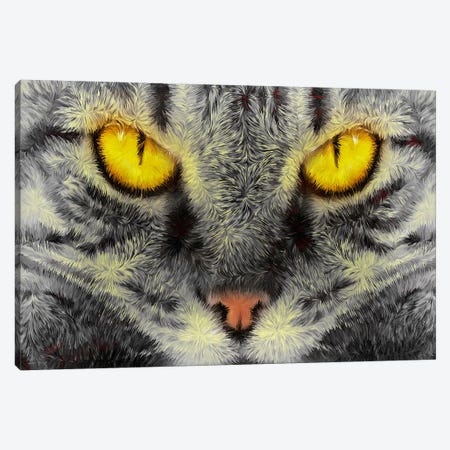 Gato Loco Canvas Print #MXS55} by Diego Tirigall Canvas Art Print