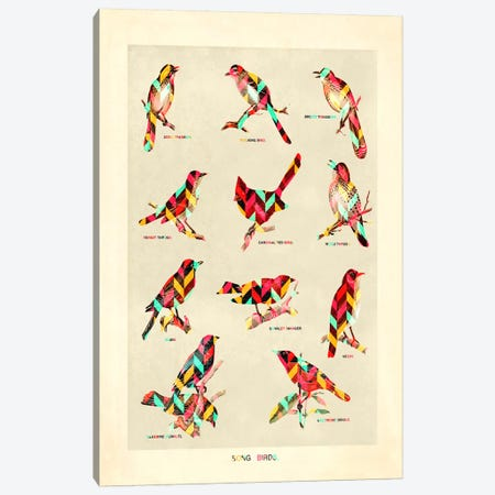 Song Birds Canvas Print #MXS68} by Diego Tirigall Art Print