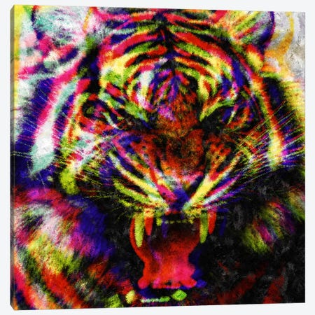 Wild Colors Canvas Print #MXS75} by Diego Tirigall Canvas Art Print