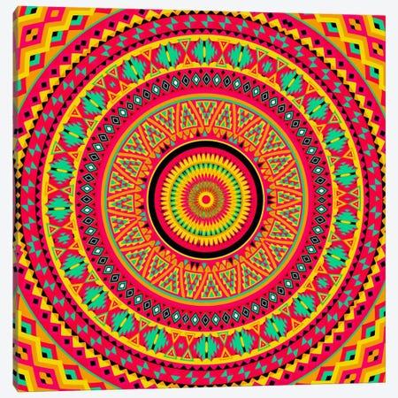 Indian Mandala Canvas Print #MXS83} by Diego Tirigall Art Print