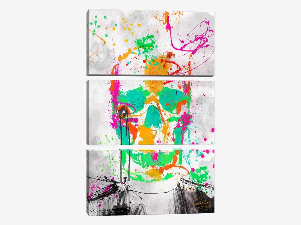 Dead Color Skull #2 by Diego Tirigall 3-piece Canvas Print