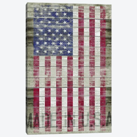 American Flag II Canvas Print #MXS98} by Diego Tirigall Canvas Wall Art