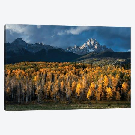 Mt Sneffels In Autumn Canvas Print #MXU10} by Mei Xu Canvas Artwork