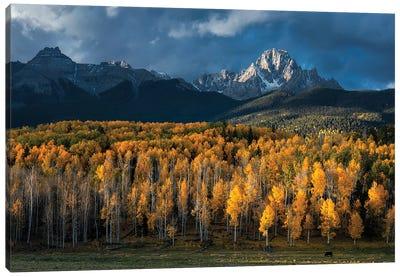Mt Sneffels In Autumn Canvas Art Print