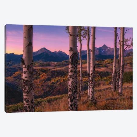 Aspen Frames Canvas Print #MXU6} by Mei Xu Canvas Art Print