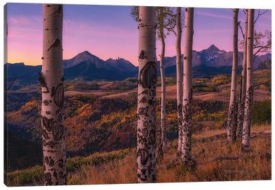 Aspen Frames Canvas Art Print