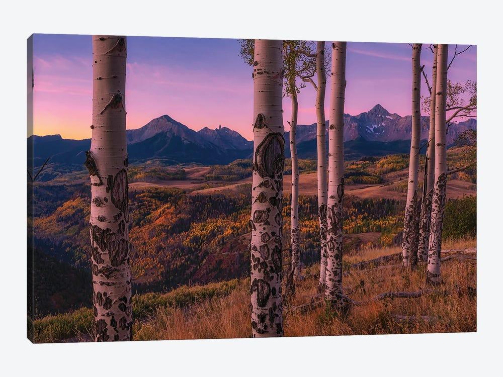 Aspen Frames by Mei Xu 1-piece Art Print