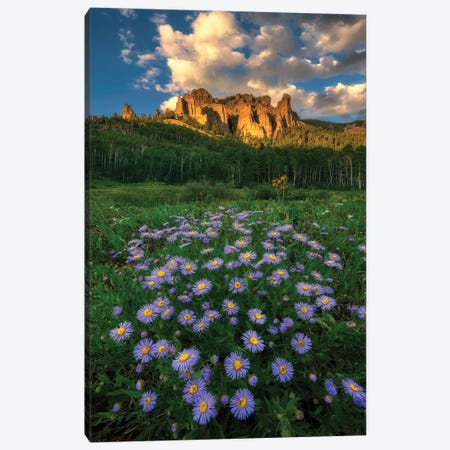 Canyon And Daisies Canvas Print #MXU8} by Mei Xu Canvas Artwork