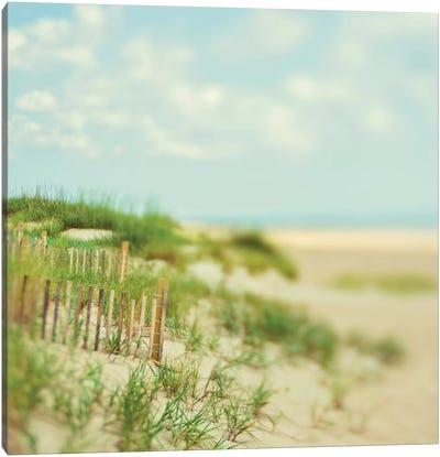 Sand Dunes Canvas Art Print