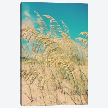 Sea Oats Canvas Print #MYA14} by Myan Soffia Canvas Artwork