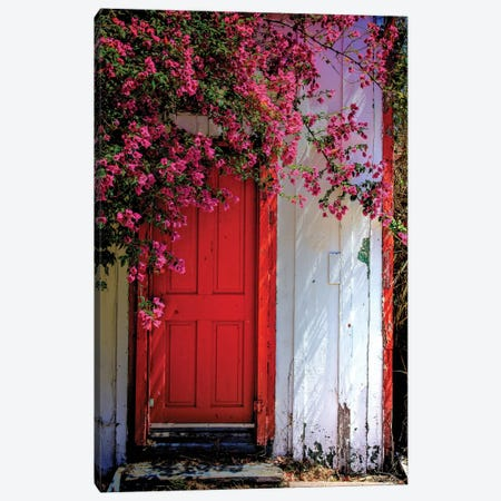 Red Door Canvas Print #MYO2} by Dean Mayo Canvas Artwork