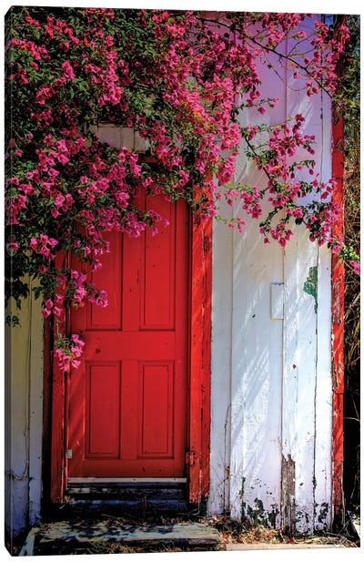 Red Door Canvas Art Print