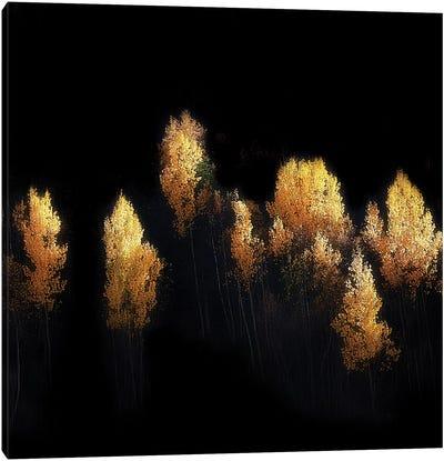 Ushguli Impression Canvas Art Print