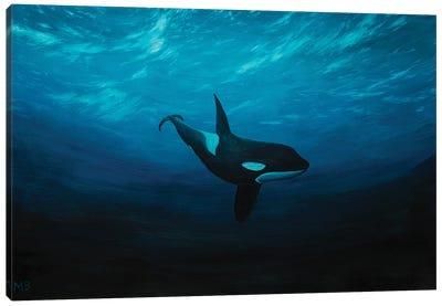 Wild Freedom Canvas Art Print