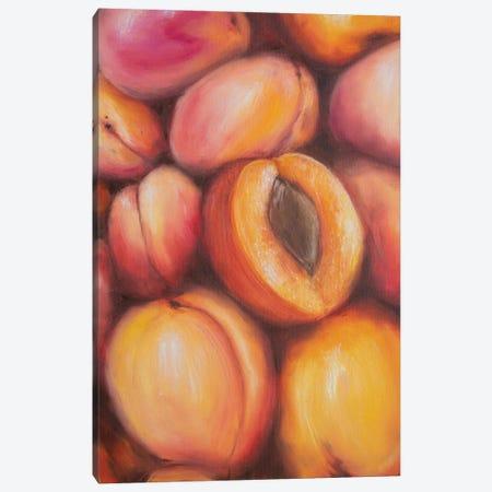Sweet Peaches Canvas Print #MZT33} by Marina Zotova Canvas Artwork