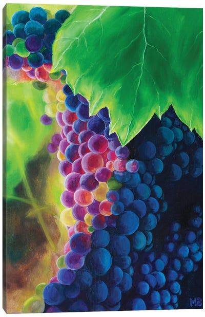 Sunny Grapes Canvas Art Print