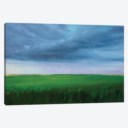 Summer Thunderstorm Canvas Print #MZT43} by Marina Zotova Canvas Print