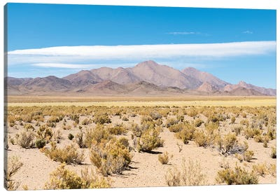 Landscape near the salt flats Salinas Grandes in the Altiplano, Argentina. Canvas Art Print