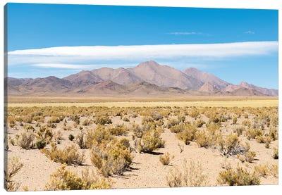 Landscape near the salt flats Salinas Grandes in the Altiplano, Argentina. Canvas Art Print