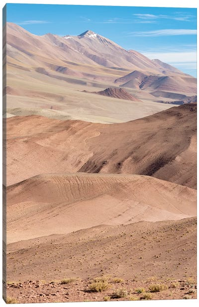 The Argentinian Altiplano along Routa 27 between Pocitos and Tolar Grande, Argentina Canvas Art Print