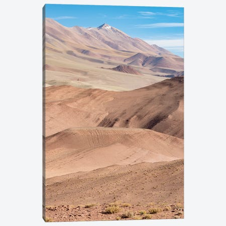 The Argentinian Altiplano along Routa 27 between Pocitos and Tolar Grande, Argentina Canvas Print #MZW125} by Martin Zwick Canvas Artwork