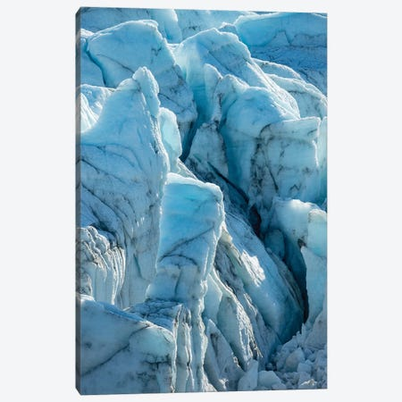 The Russell Glacier. Landscape close to the Greenland Ice Sheet near Kangerlussuaq, Greenland Canvas Print #MZW127} by Martin Zwick Canvas Artwork